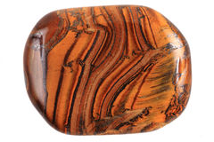 Tiger eye isolated Stock Photography