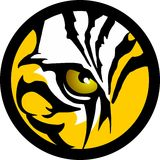 Tiger Eye. Eye of the tiger spirit Stock Photos