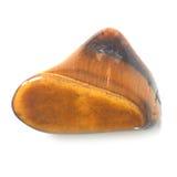 Tiger Eye Stones su bianco Fotografie Stock