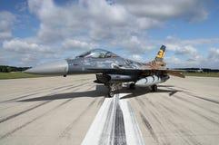 Tiger för F 16 Arkivfoto