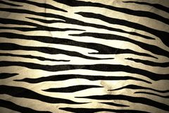 Tiger fabric texture Stock Images
