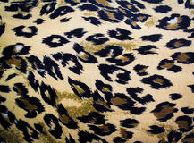 Tiger fabric texture Royalty Free Stock Photo