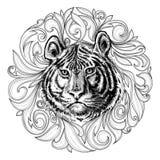 Tiger Face Imágenes de archivo libres de regalías