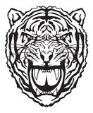 Tiger face. Tiger angry face,  illustration Royalty Free Stock Image