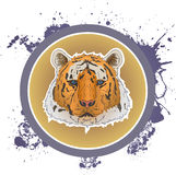 Tiger face design. Tiger face icon with circle ftame and grunge textured background. EPS 10 Stock Photos