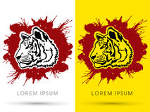 Tiger face graphic vector Stock Photography