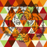 Tiger face poster art Royalty Free Stock Photo
