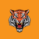 Tiger Face Roaring arrabbiato royalty illustrazione gratis