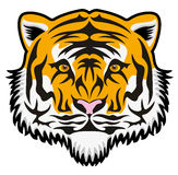Vector tiger face Royalty Free Stock Photo