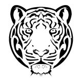 Tiger Face Tattoo Stock Photo