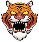 Tiger Face. Vector illustration of Tiger Face Cartoon Stock Photos