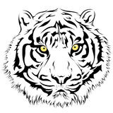 Tiger Face vektor Royaltyfri Fotografi