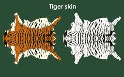 Tiger farbige Haut vektor abbildung
