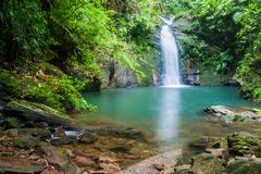 Free Tiger Fern Waterfall In Cockscomb Basin Wildlife Sanctuary, Beliz Stock Photography - 130238972