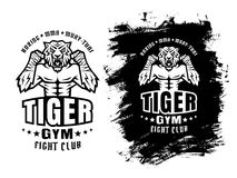 Tiger fighter. Template sport logo for fighting club with angry tiger Royalty Free Stock Image