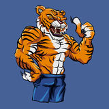Tiger Fighting Mascot libre illustration