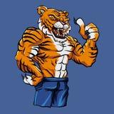 Tiger Fighting Mascot. Vector illustration Stock Photos