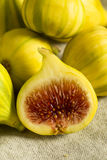 Tiger Figs orgânico amarelo cru imagens de stock royalty free