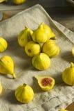 Tiger Figs orgânico amarelo cru imagem de stock royalty free