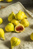 Tiger Figs orgânico amarelo cru fotografia de stock royalty free