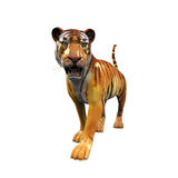 Tiger Figure Isolated Royaltyfri Bild