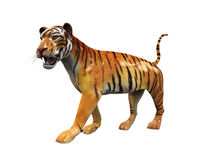 Tiger Figure Isolated Stock Photo