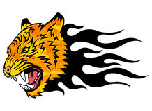 Tiger on fire. Head of a tiger in tongues of flame in the form of a tattoo. Tiger anger. This is vector illustration ideal for a mascot and tattoo or T-shirt Stock Photography