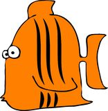 Tiger fish Royalty Free Stock Photo