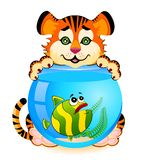 Tiger with  fish in aquar Royalty Free Stock Images