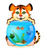 Tiger with fish in aquarium. Little cartoon tiger with little colorful tropical fish in aquarium Stock Photography