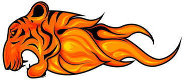 Tiger Flame. Fiery tiger head symbol , horizontal, isolated Stock Images