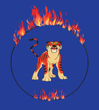 Tiger with flaming ring Royalty Free Stock Photos