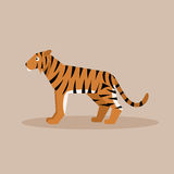Tiger. Flat vector illustration Stock Photography