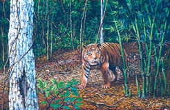 Tiger in the forest Stock Photo