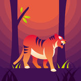 Tiger in forest Stock Images