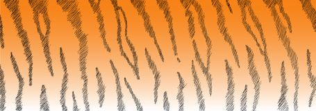 Tiger Fur. Fur Tiger - hand-painted with thin strokes Stock Photos