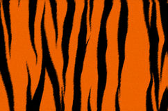 Tiger fur. Imitation of the fragment tiger skins. Black and orange stripes Stock Photography