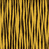 Tiger Fur Royalty Free Stock Images