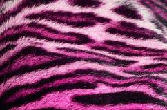 Tiger fur closeup Stock Photo