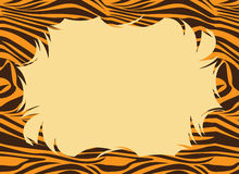 Tiger Fur Print Border Stock Images