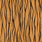 Tiger fur texture Royalty Free Stock Images