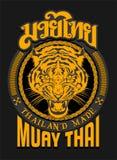 TIGER-GEIST MUAY THAILÄNDISCHES Stockfotografie