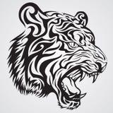 Tiger-Gesicht Stockfotografie