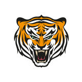Tiger with grin. Isolated head of roaring tiger with grin in style the mascots for sports teams. Layered vector illustration - easy to edit stock illustration