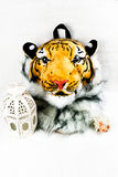 Tiger-Haupttasche Stockfoto