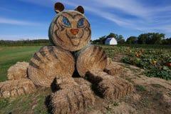 Tiger Hay Stacks - dia na exploração agrícola imagem de stock royalty free