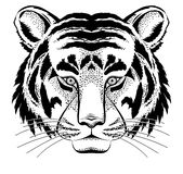 Tiger head Royalty Free Stock Image