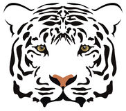 Tiger head. Vector image of tiger head with realistic eyes Royalty Free Stock Photography