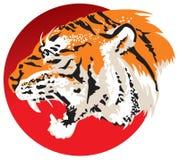 Tiger head. Against a Flag of Japan, rising sun Hinomaru, sun circle, Martial Arts, Samurai, Bushi, color  image Stock Image