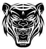Tiger Head Photo stock